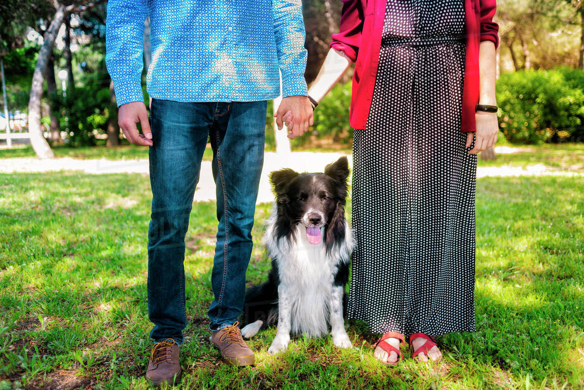 Young couple posing with a dog in a city park Royalty-free stock photo