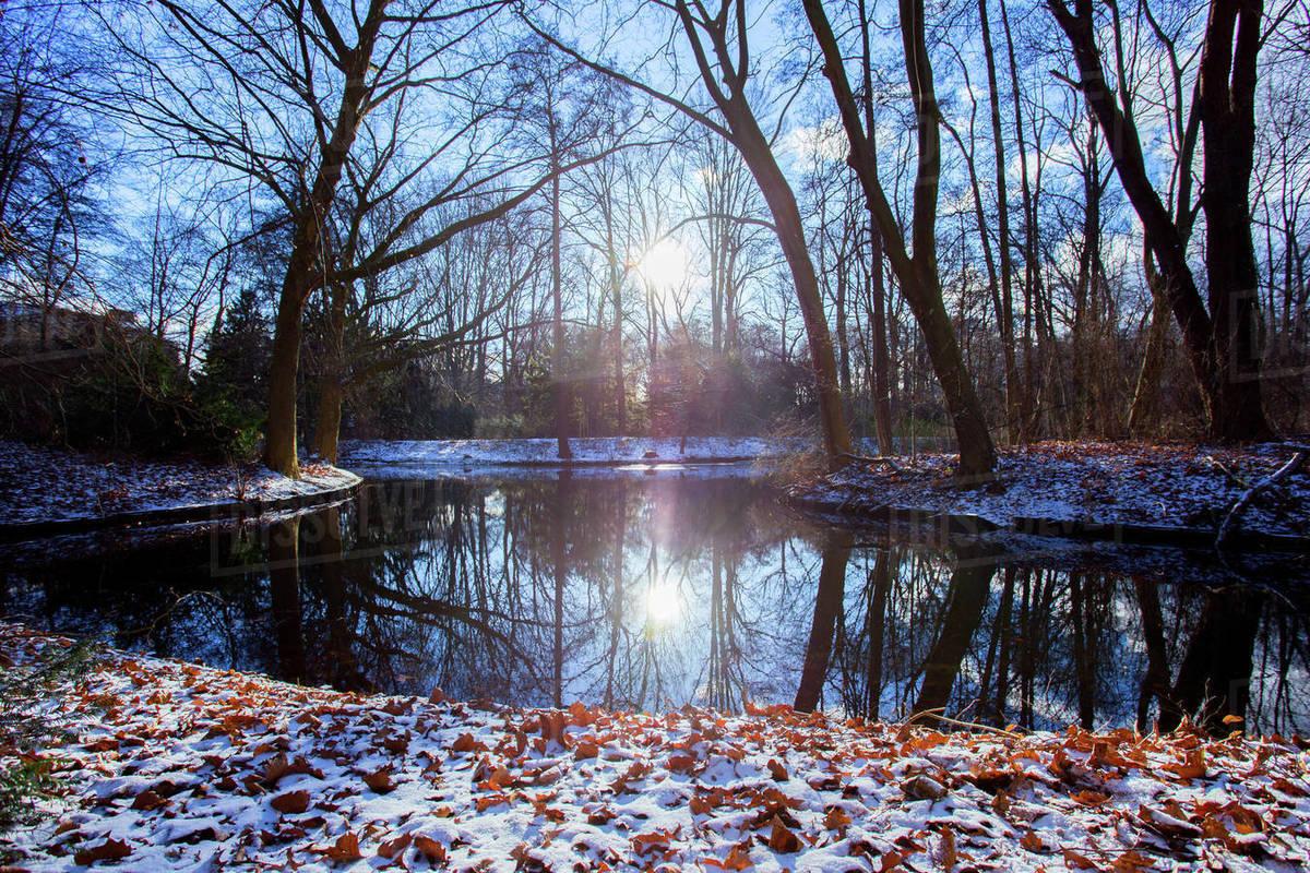 Winter in Tiergarten Royalty-free stock photo