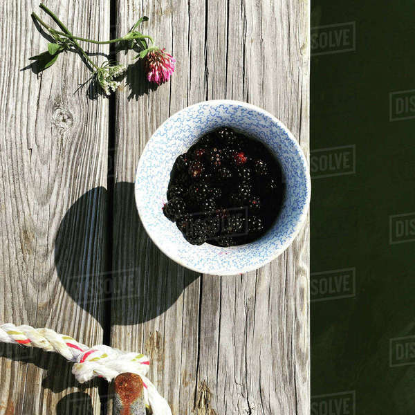 High angle view of blackberries in bowl on jetty Royalty-free stock photo