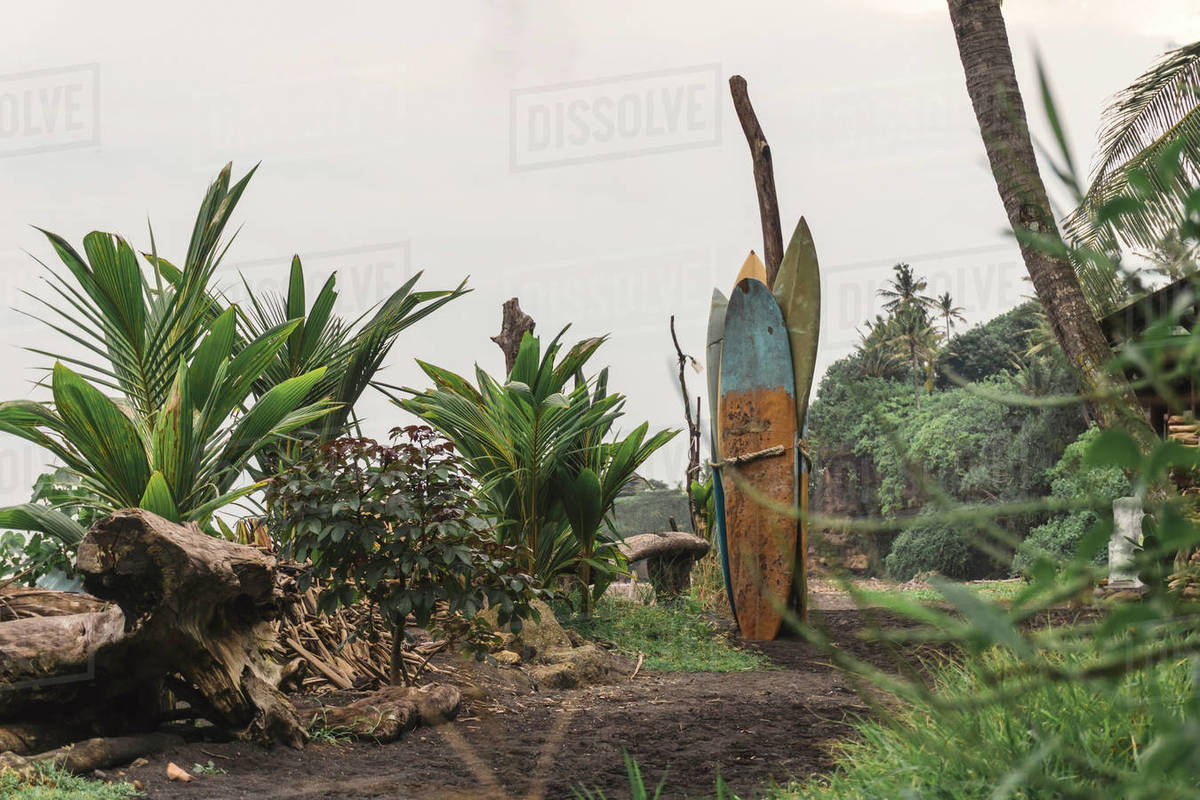 Old surfboards, Balian beach, Bali, Indonesia Royalty-free stock photo