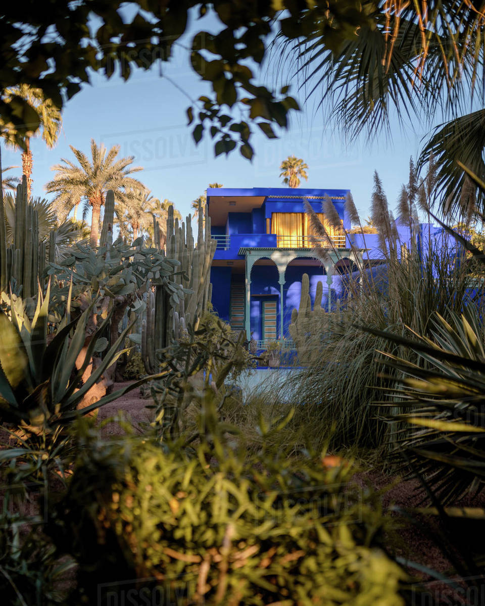 Majorelle Gardens Royalty-free stock photo