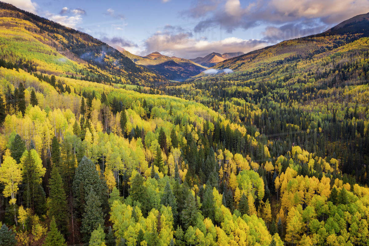 Landscape of mountains and trees changing colors in fall. Royalty-free stock photo