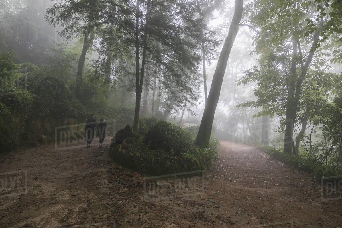 Quinta de Regaleira environment with fog Royalty-free stock photo