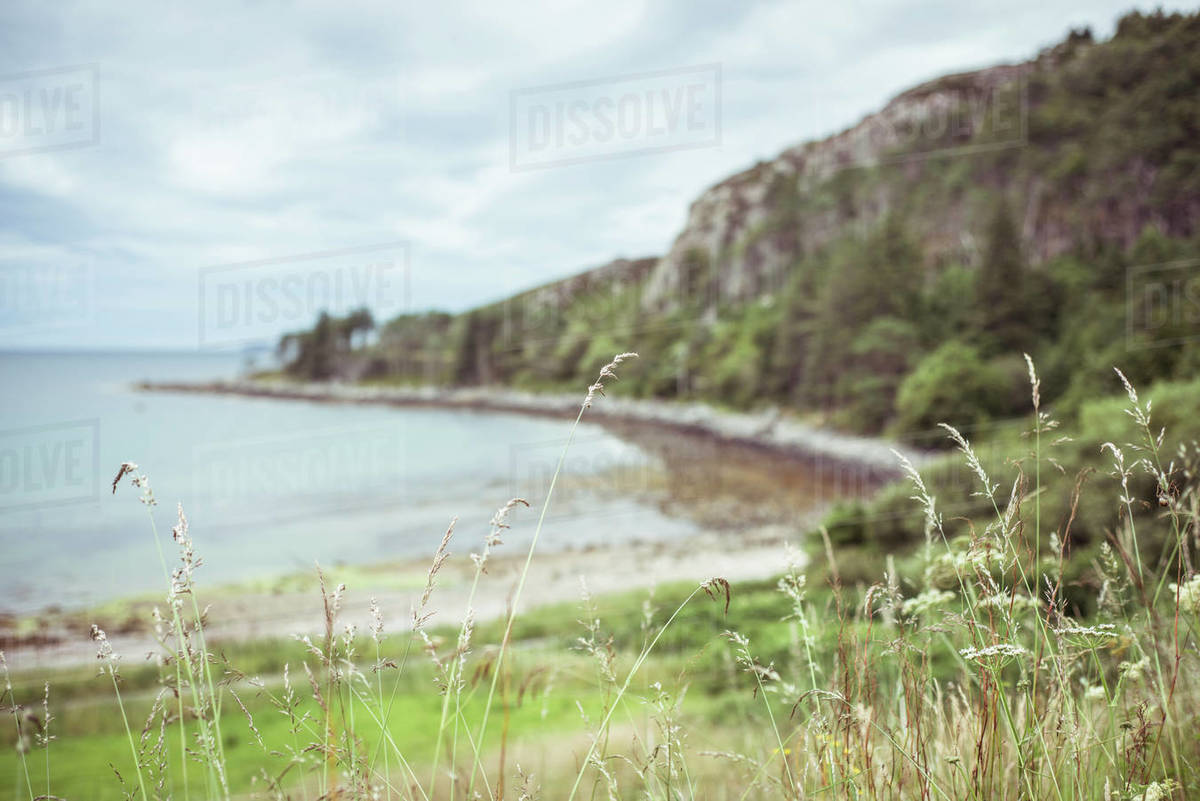 Beautiful blue bay in scotland with cliffs and grass in foreground Royalty-free stock photo