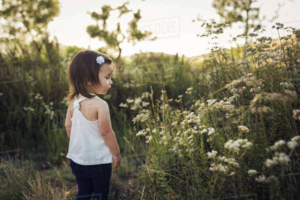 Rear view of girl looking at flowers while standing on field Royalty-free stock photo