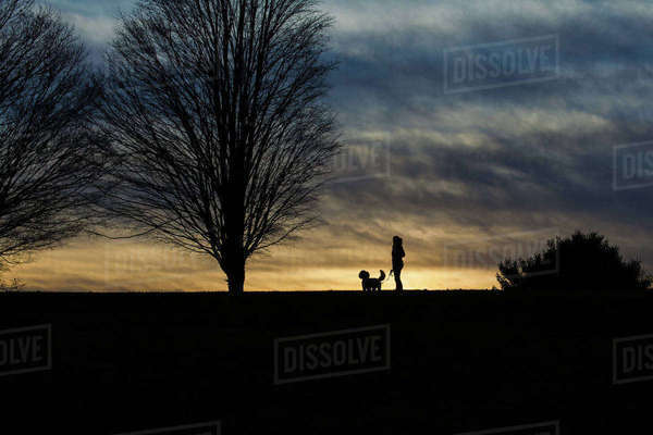 Silhouette woman with dog standing on land against stormy clouds during dusk Royalty-free stock photo