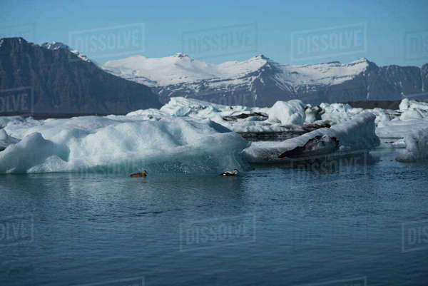 Scenic view of glacier in sea by snowcapped mountains Royalty-free stock photo