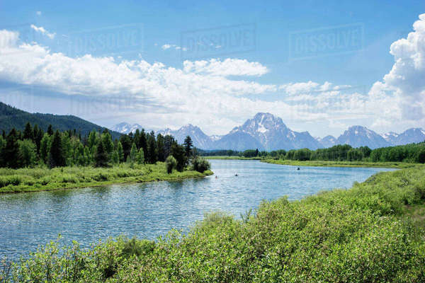 Scenic view of river by forest against sky Royalty-free stock photo