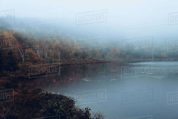 Scenic view of lake during foggy weather Royalty-free stock photo