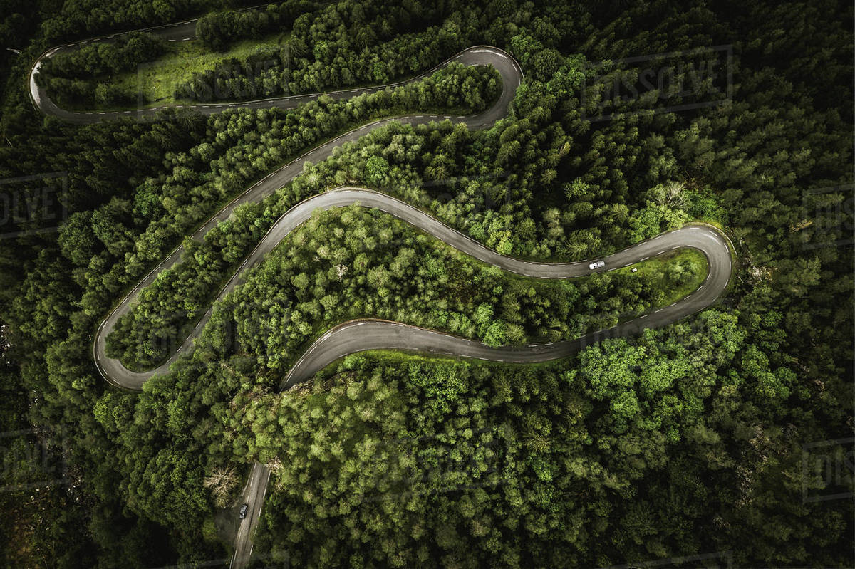 Aerial shot of winding road passing through tree covered landscape, Lofoten, Norway Royalty-free stock photo