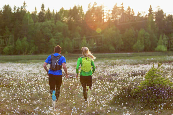 Sweden, Vasterbotten, Grossjons Nature Reserve, Man and woman running in meadow Royalty-free stock photo