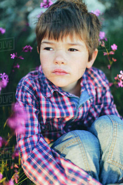 Sweden, Boy (6-7) sitting among pink flowers Royalty-free stock photo