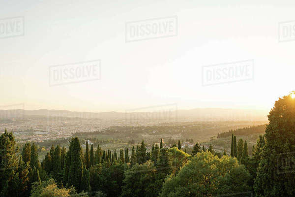 Italy, Tuscany, Florence, Townscape with green trees in foreground Royalty-free stock photo