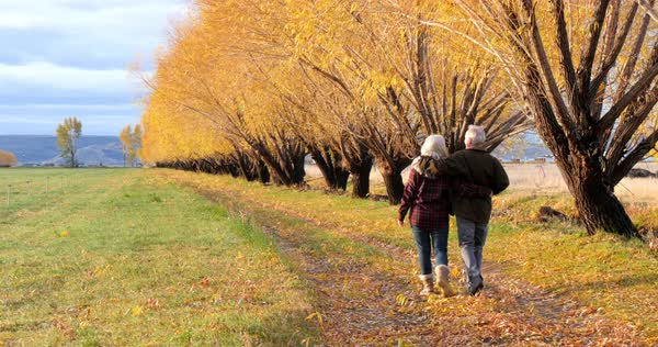 Caucasian senior couple walking and talking near autumn trees Royalty-free stock video