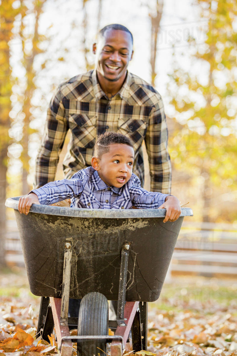 Black Father Pushing Son In Wheelbarrow In Autumn Leaves Stock Photo