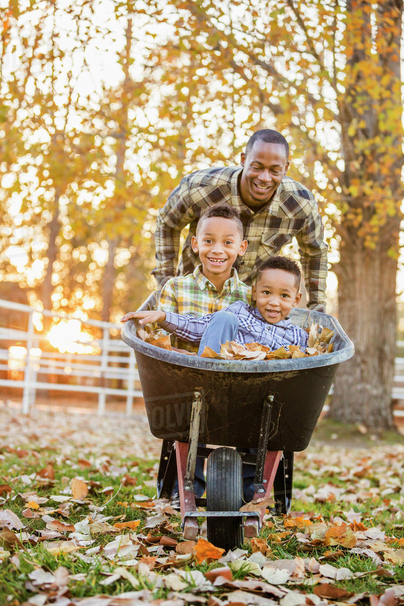 Father Pushing Sons In Wheelbarrow In Autumn Leaves Stock Photo