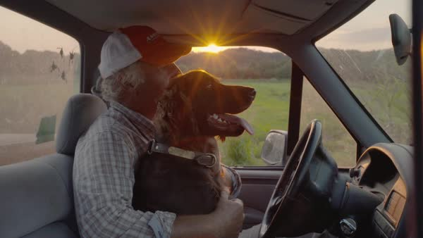 Hand-held shot of a dog sitting in lap of a man in a truck Royalty-free stock video