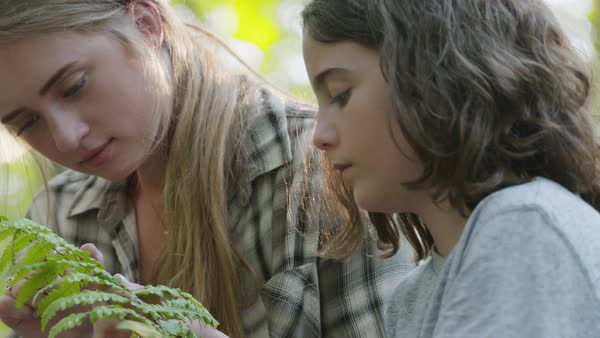 Slow motion shot of a boy and a young woman looking at fern leaves Royalty-free stock video