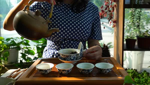 Woman preparing tea for Chinese tea ceremony Royalty-free stock video