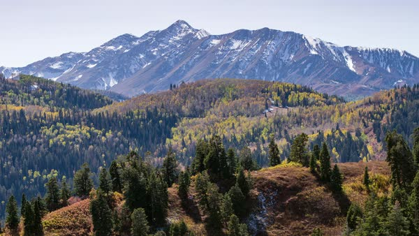 Zoomed aerial view flying towards trees on hilltop viewing layers towards mountain peaks in fall. Royalty-free stock video