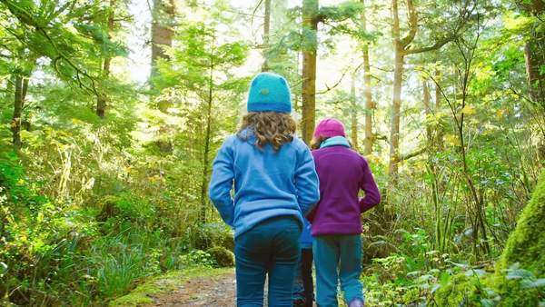 Three cute little kids walk down a forest trail together. Medium shot. Royalty-free stock video
