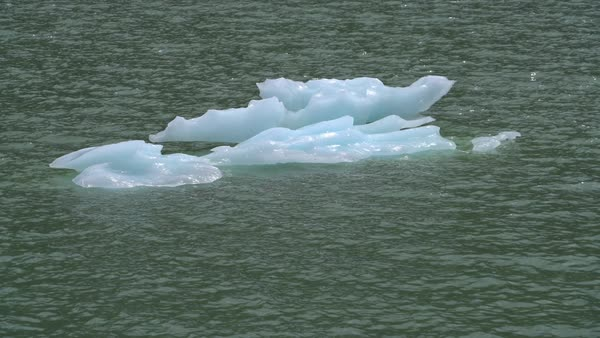 Glacial ice floating in lake Royalty-free stock video