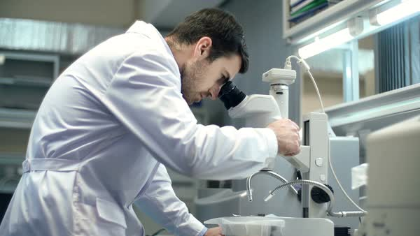 Scientist using microscope in laboratory Royalty-free stock video