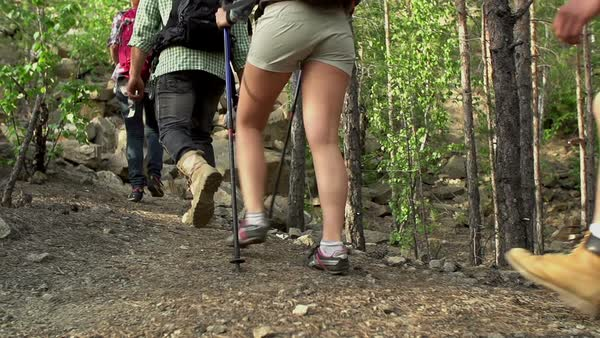 Pan of four tourists with backpacks hiking through the woods in slow motion Royalty-free stock video