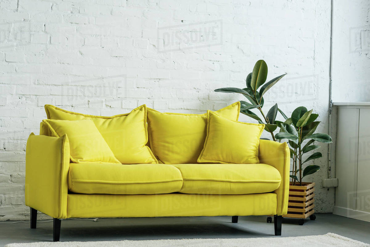 Modern Light Room Interior With Yellow Sofa D2115 290 432