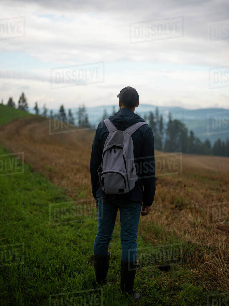 Man standing in field and looking at forested mountains against cloudy sky Royalty-free stock photo