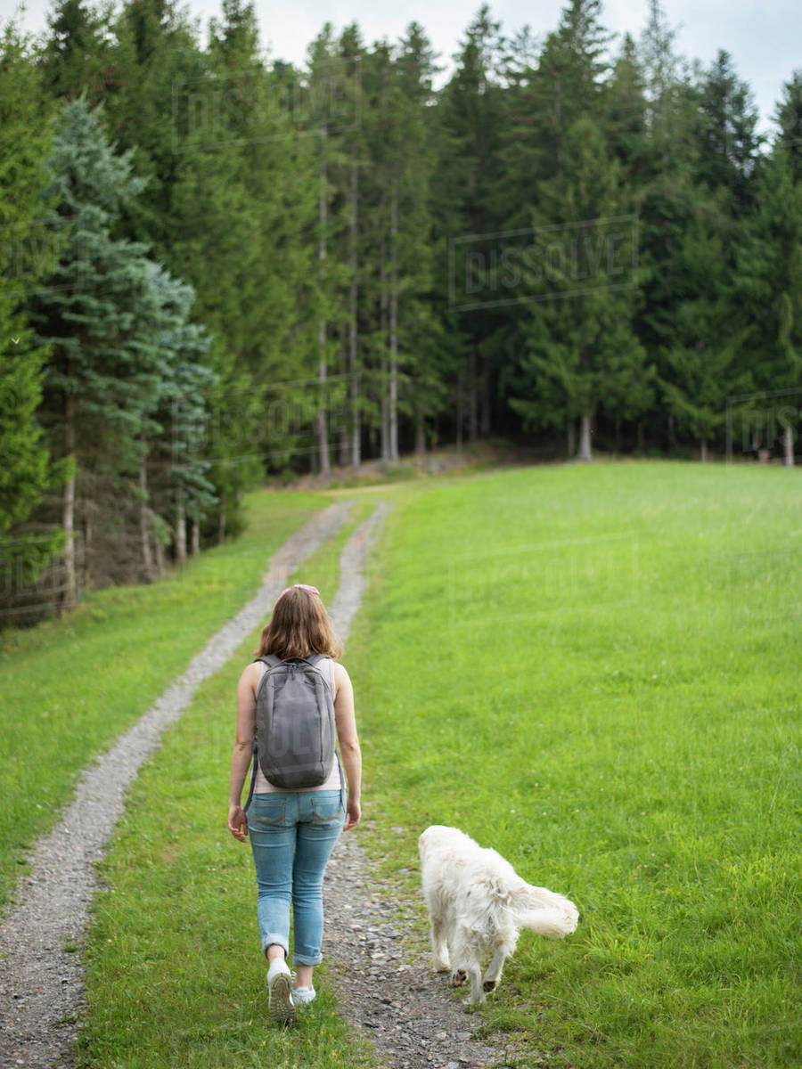 Woman walking with her dog in forest Royalty-free stock photo