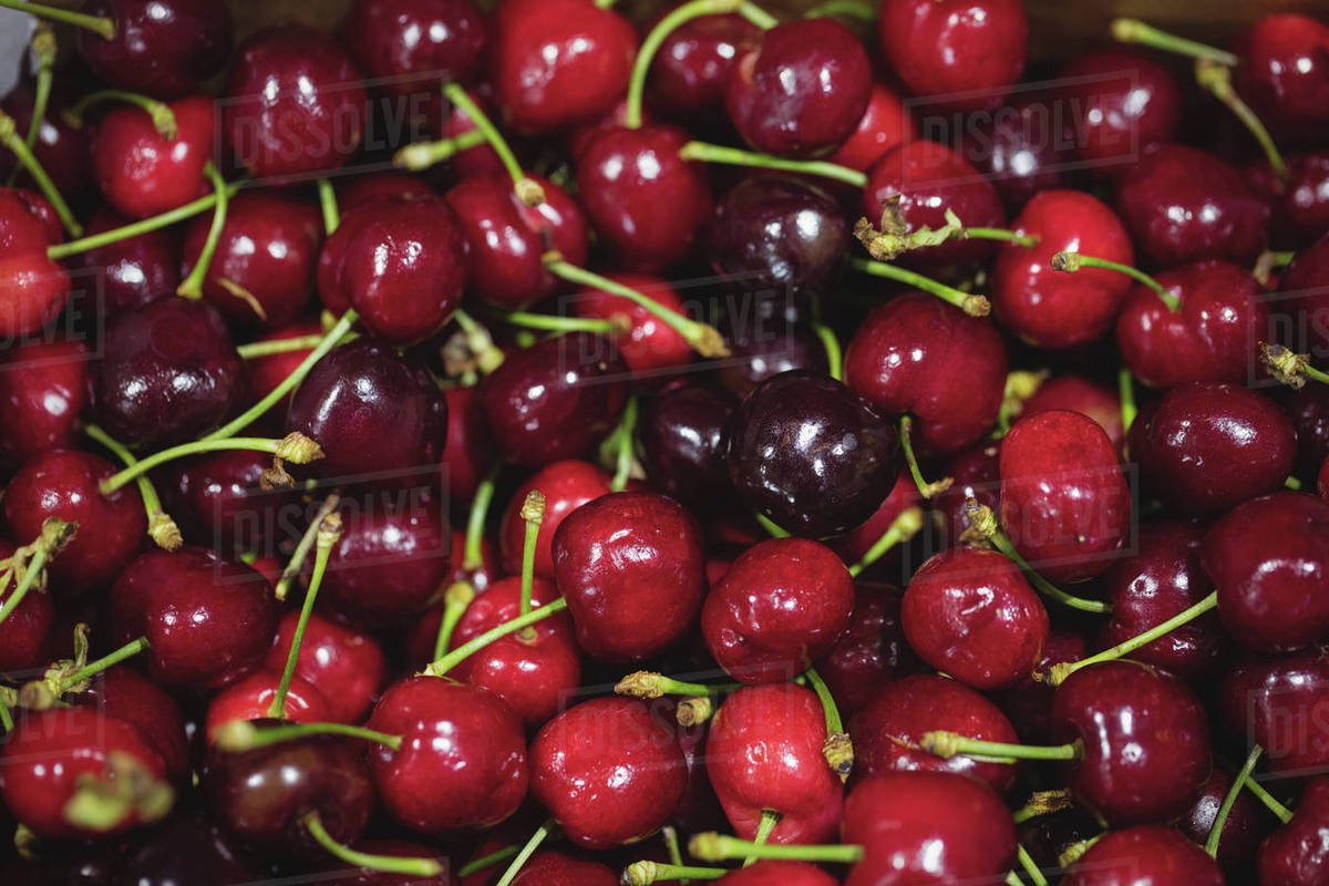close up of red cherries in supermarket stock photo dissolve