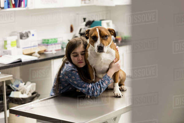 Girl embracing her pet dog in clinic Royalty-free stock photo