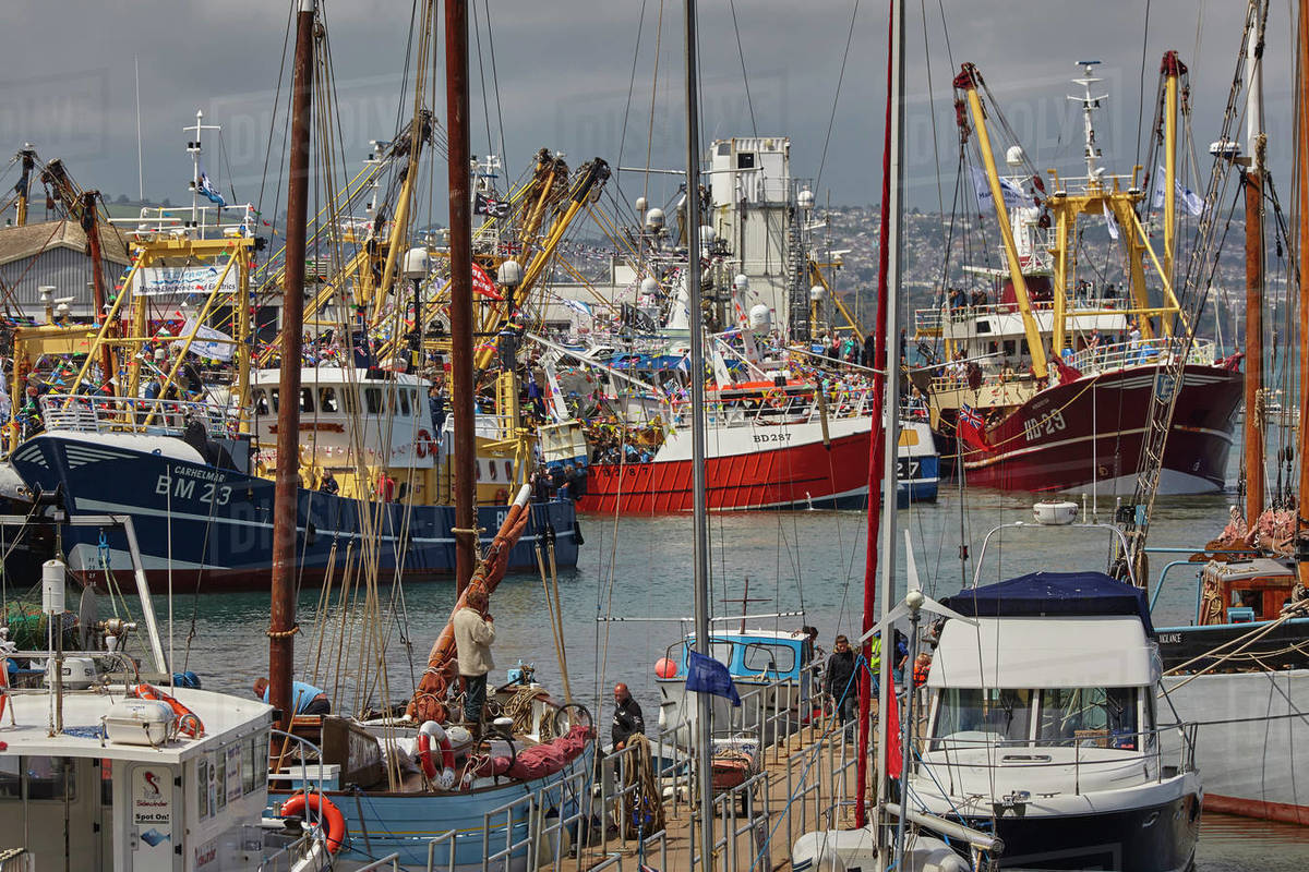 Boats tied up in the busy harbour at Brixham, Torbay, Devon, England, United Kingdom, Europe Royalty-free stock photo