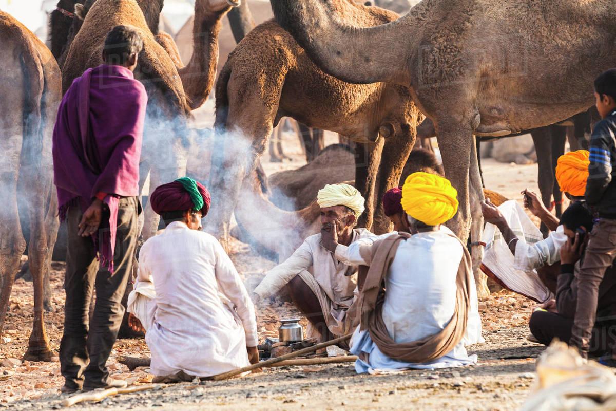 Camel herders at the Pushkar Camel Fair, Pushkar, Rajasthan, India, Asia Royalty-free stock photo