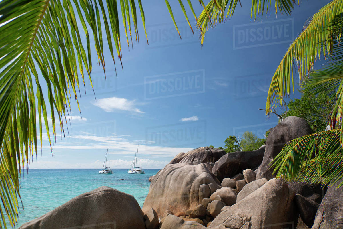 Distinctive limestone rock formations at Anse Lazio on Baie Chevalier, Praslin, Seychelles, Indian Ocean, Africa Royalty-free stock photo