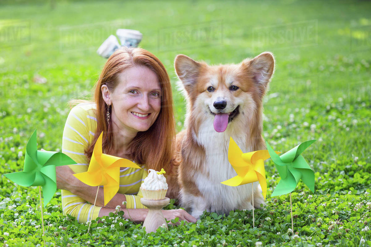 Dog in the family - birthday off beautiful corgi fluffy on green lawn and colorful party flags on the background Royalty-free stock photo
