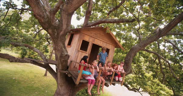 Mixed race group of children sitting in a row on the edge of a wooden treehouse in the branches of a big tree with lush green leaves Royalty-free stock video