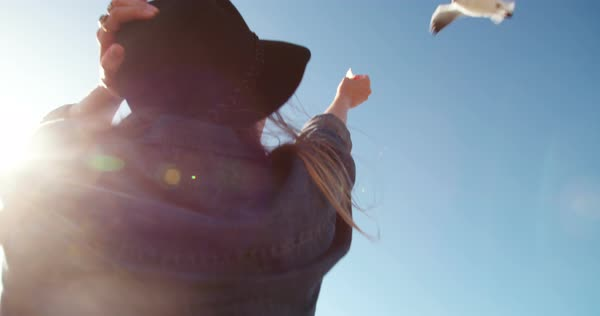 Hipster woman feeding seagull with hands at the beach in slow motion Royalty-free stock video