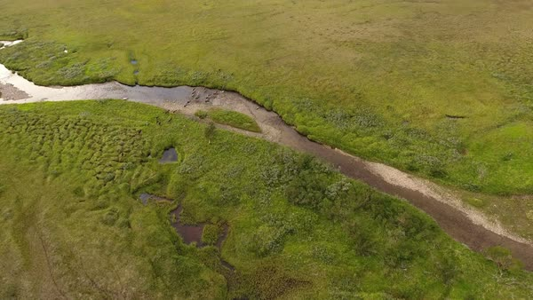 Aerial view of reindeer herd crossing a river in Tundra Royalty-free stock video