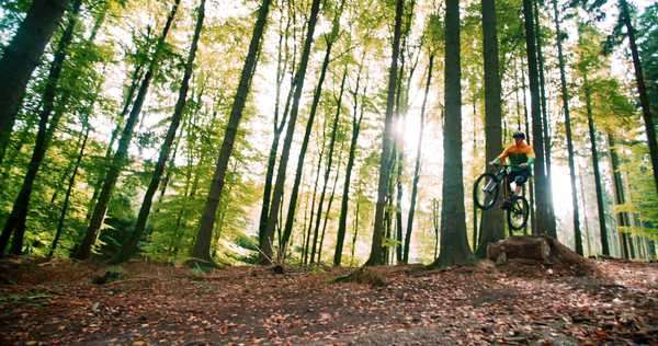 Man on mountain bike jumps high in slow motion in forest Royalty-free stock video