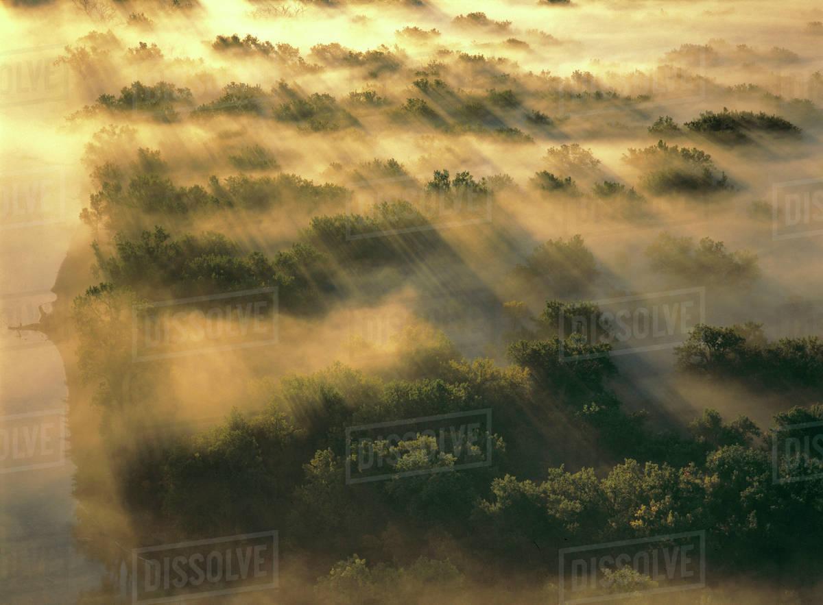 Usa north dakota missouri river valley morning fog settles in the usa north dakota missouri river valley morning fog settles in the treetops in north dakotas missouri river valley publicscrutiny Gallery