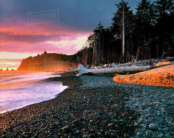 USA, Washington State, Olympic National Park. Waves lap the rocky beach at sunset at Rialto Beach, part of the World Heritge Site that is Olympic National Park, Washington State. Royalty-free stock photo
