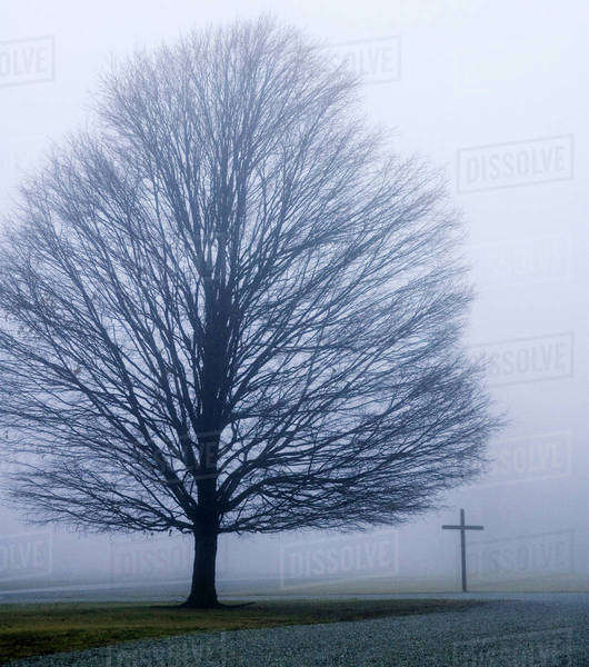 USA, Indiana, Westfield. Tree and Christian cross on a foggy winter day. Royalty-free stock photo