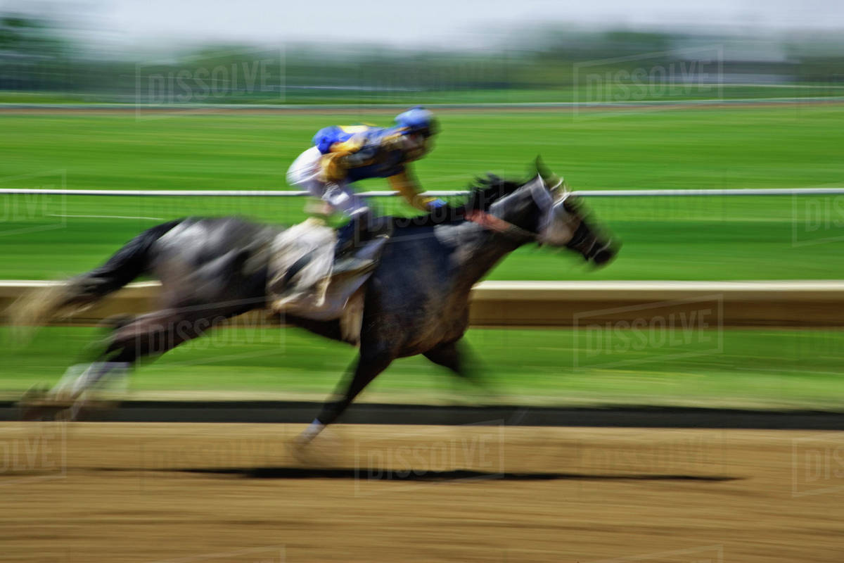 Spring Thoroughbred Horse Racing At Keeneland A National Historic
