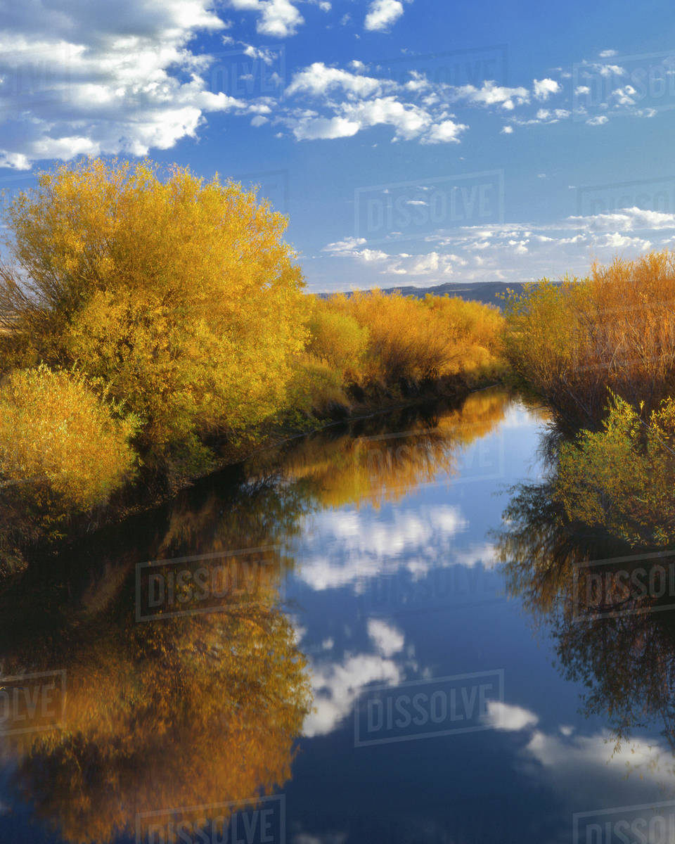 USA, Oregon, Malheur National Wildlife Refuge  Donner and Blitzen River  landscape  stock photo