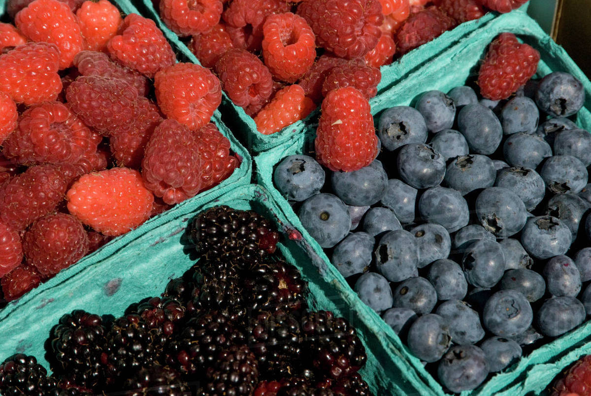 Blueberries Raspberries Pictures