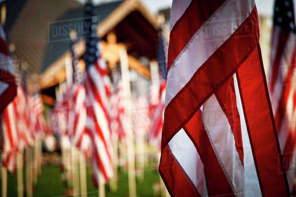 USA, Oregon, Salem, flags out for 10 year anniversary of 9/11 Royalty-free stock photo