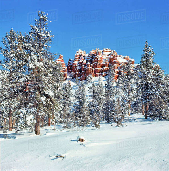 USA, Utah, Bryce Canyon National Park. Fresh snow enhances the color on the sandstone bluffs in Bryce Canyon National Park, Utah. Royalty-free stock photo