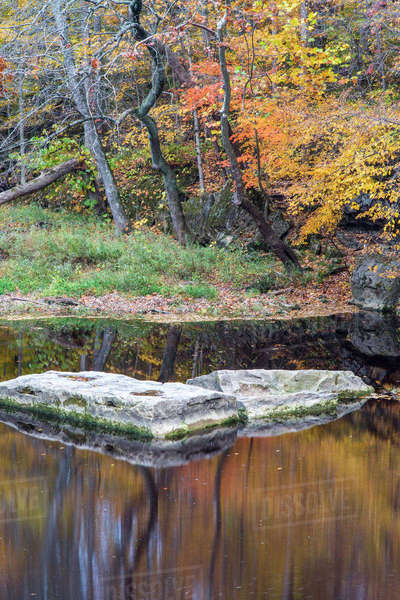 Fall Fork of Clifty Creek in Anderson Falls Nature Preserve in Bartholomew County, Indiana, USA Rights-managed stock photo